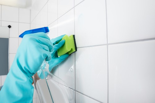 Cleaning toilet tiles